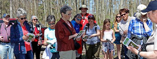 Yvette guides walkers in 2017