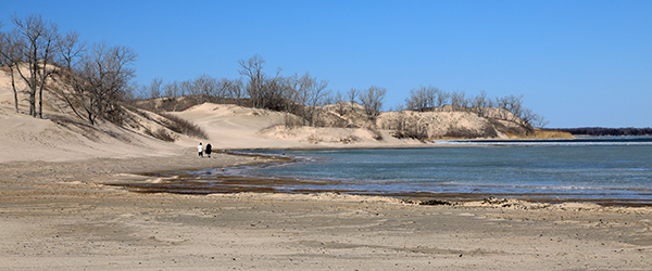 Low Water at Dunes Beach