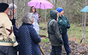 Mother's day Wildfower Walk and Tea 2019