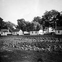 Shore Acres Farm